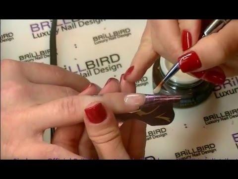 BrillBird Master Class – Bán Nikoletta – Babyboomer